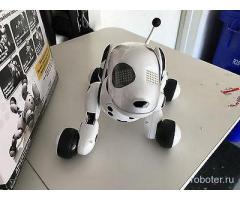 Собака-робот zoomer