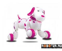 Робот собака
