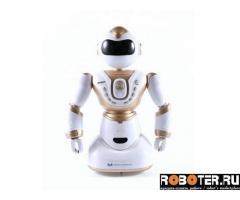 Радиоуправляемый робот Meizhi MZ-2850