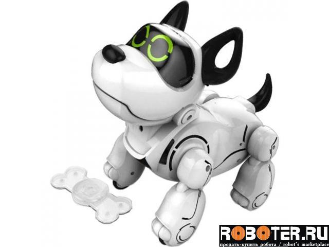 Собака робот