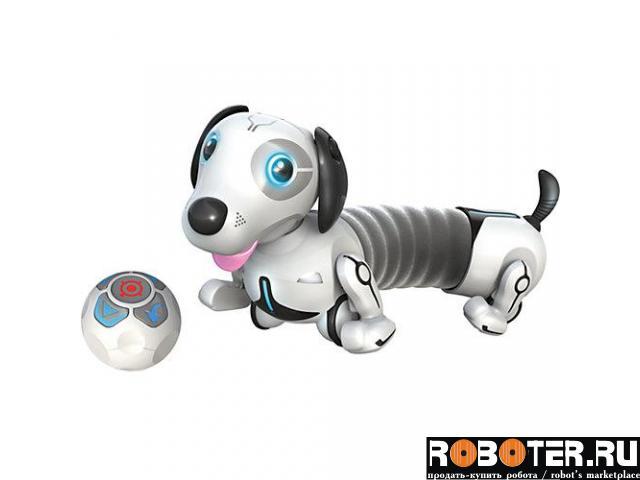 Собака-робот Дэкел