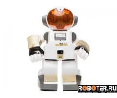 Робот echo bot эхо бот