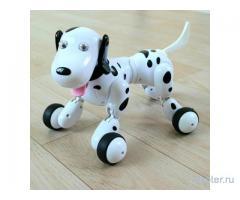 Собака-робот, Smart Dog