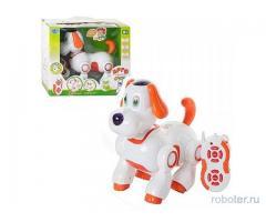 Собака робот Арго 9599