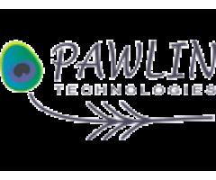 Павлин Технологии