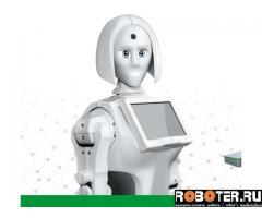 Робот Kiki в аренду от производителя