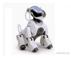 Собака-робот AIBO ERS-7 M-2