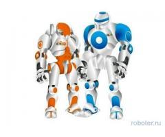 Курсы по робототехнике Роботрек - Нижневартовск