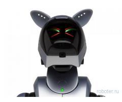 Aibo ERS-210 (Айбо) собака-робот