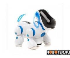 Собака-робот Shantou