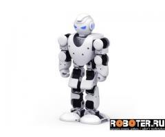 Интеллектуальный робот на дистанционном управлении