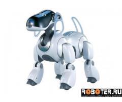 Sony Aibo ERS 7 M3 собака-робот
