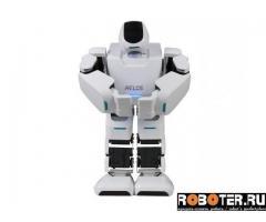 AELOS: робот для обучения и развлечения