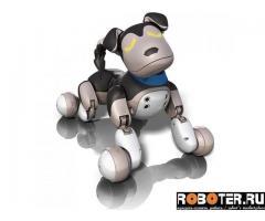 Собака робот Zoomer Shadow Шэдоу