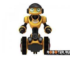 Робот-кладоискатель