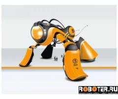 Robot-Kit.ru