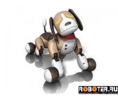 Робот-собака zommer