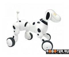 Собака робот, робопес, умный пес