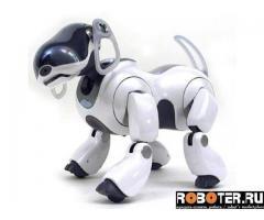 AIBO ERS-7 M2, белый