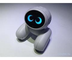 Робот Domgy от ROOBO