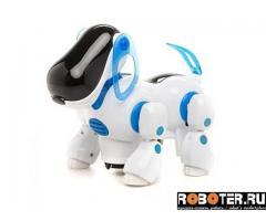 Интерактивная собака-робот (Киберпес)