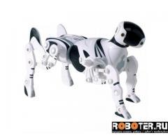 Интерактивный робот-игрушка robopet б/у