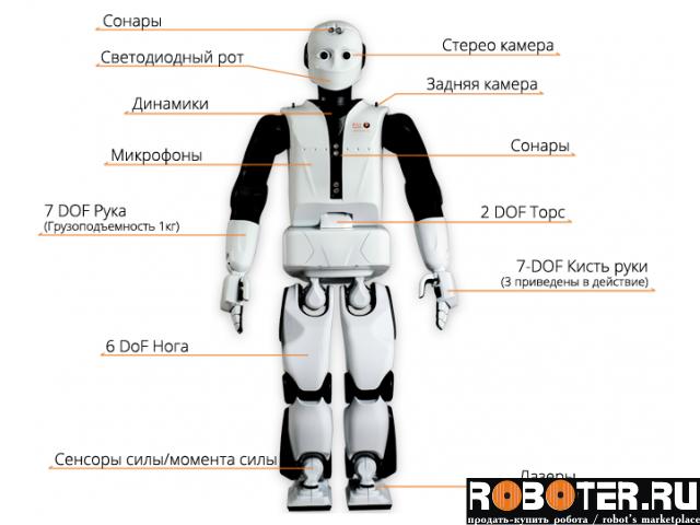 Андроидный робот REEM-C 165 см