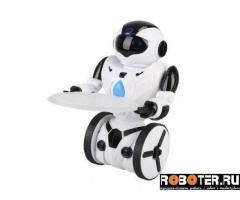 Робот балансирующий SPL BR1