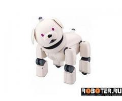Aibo ers3 Latte Робот собака