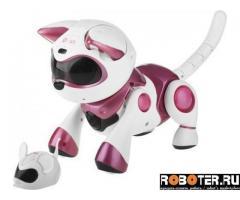 Кошка-робот с мышкой