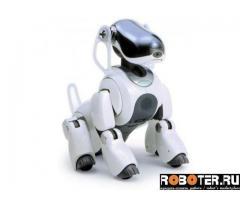 Собака робот sony aibo ers-7