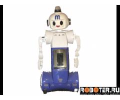 Робот Modulo 7 (1 м) Корея - под восстановление