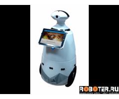 Говорящий робот промоутер R. BOT 100