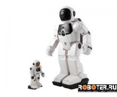 Большой и маленький программируемые роботы