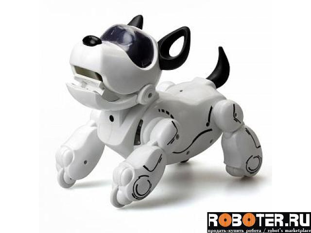 Робот-собака Pupbo