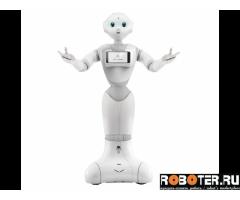 Аренда робота Pepper/Пеппер