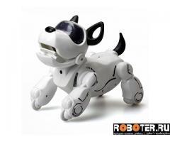 Робот Собака Pupbo