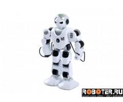 Робот ZYA-A2739-1
