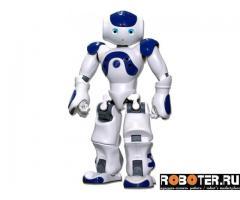 Робот NAO H25